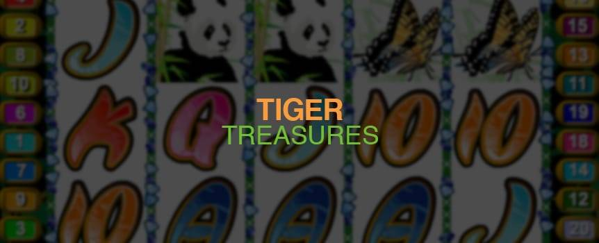 Legend has it that there is a lost jungle that holds the untold riches of a thousand-year-old kingdom. Tucked away deep in the jungle, the treasure is guarded by the mysterious jungle cat  the Bengal Tiger.