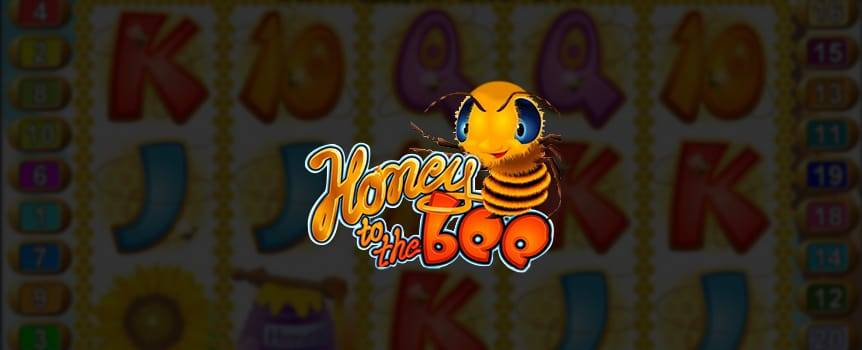 The busy bees in Honey to the Bee have gathered some sweet prizes that you can win with a simple spin of the reels. Get on up to the honeycombed reels for this simple and sweet game of chance.